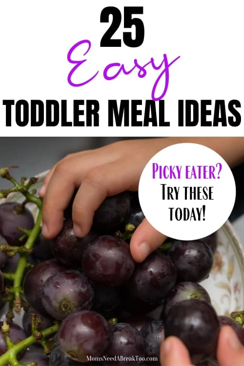Toddler Meal Ideas_Picky Eaters